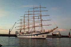 cruise ship agency